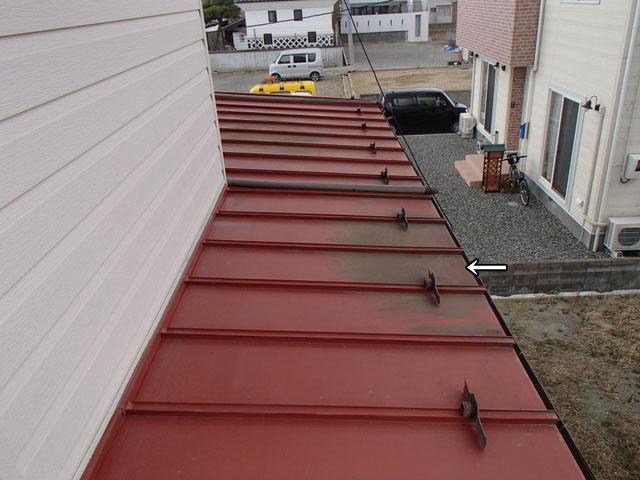トタン屋根 藻 発生