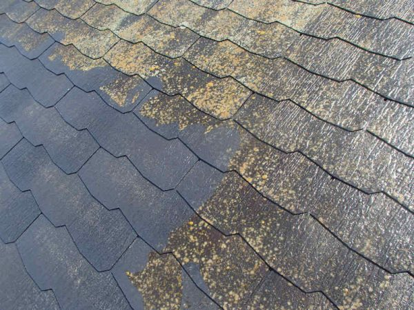 屋根塗装 水洗い カラーベスト