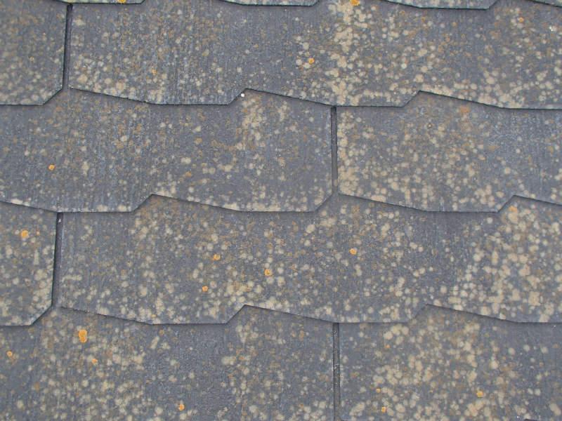 屋根塗装 カラーベスト コロニアル スレート