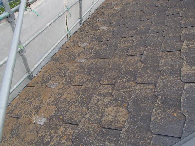 コロニアル 屋根塗装 施工前