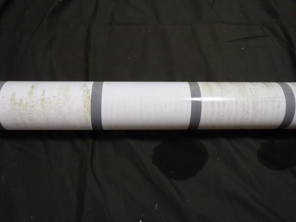 低汚染型塗料実験4年半後