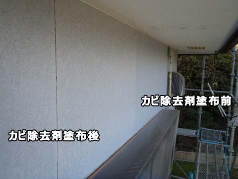 外壁塗装 カビ除去中